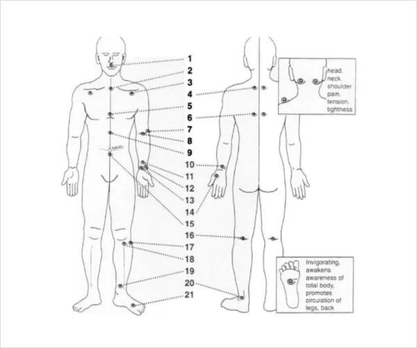Reflexology Chart Templates