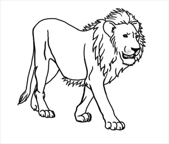 Lion Drawing Template