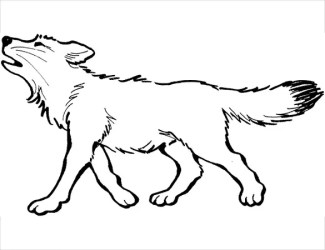 31+ Wolf Drawings PDF JPEG Free & Premium Templates