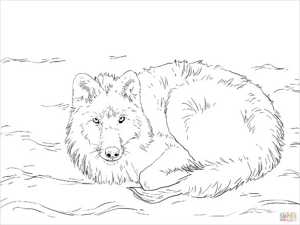 Coloring Arctic Cat Snowmobile Drawing Sketch Coloring Page