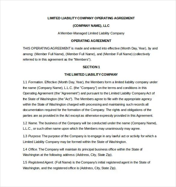 company operating agreement template