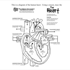 Blank Heart Diagram Labeled Cisco Unified Communications Architecture 19+ Templates – Sample, Example, Format Download | Free & Premium