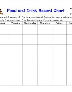 Food and drink record chart download in pdf format also log templates doc excel free  premium rh template