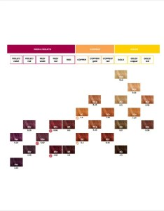 Hair color chart download also template  free word pdf documents rh