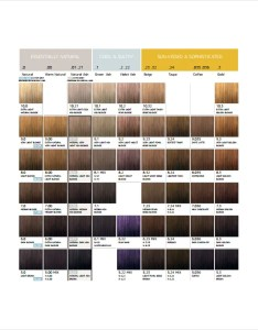 Hair color chart to download also template  free word pdf documents rh