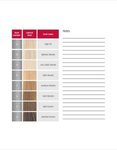 Hair color chart free download also template  word pdf documents rh
