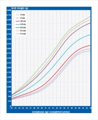8+ Baby Weight Growth Chart Templates