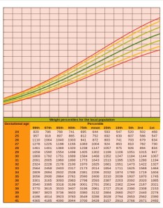 Baby weight percentiles calculator also growth chart free excel pdf documents download rh template