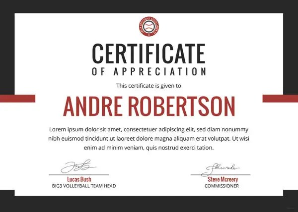 VolleyBall Certificate 3 Word PDF Documents Download Free Amp Premium Templates