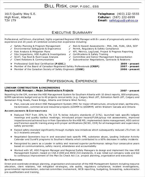 example of executive resume summary statement
