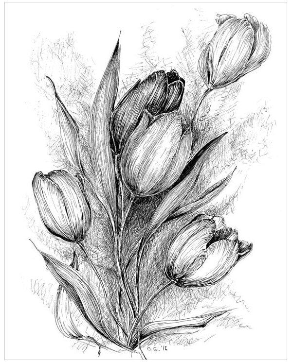19 flower drawings free