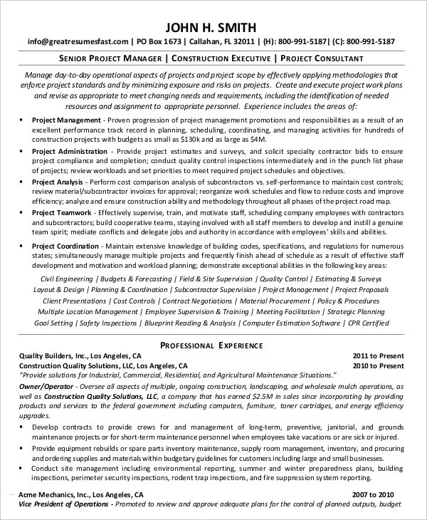 Project Resume Example - Examples of Resumes