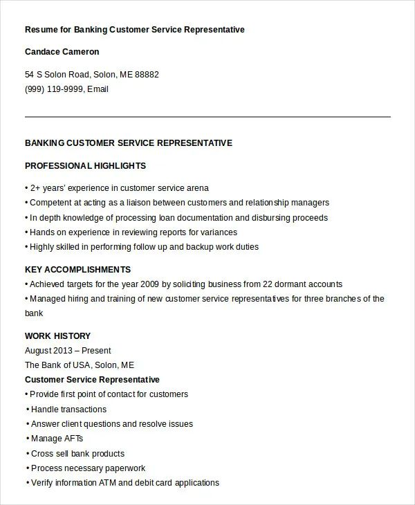 resume highlights customer service