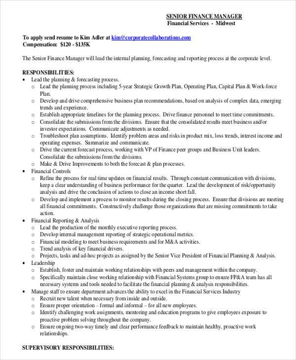 senior finance executive resume sample