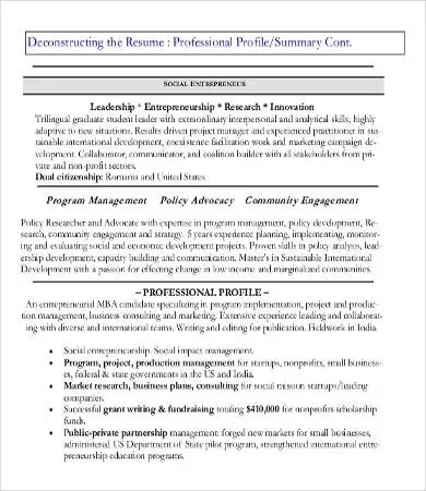 Professional Resume Examples 8 Free Word PDF Documents