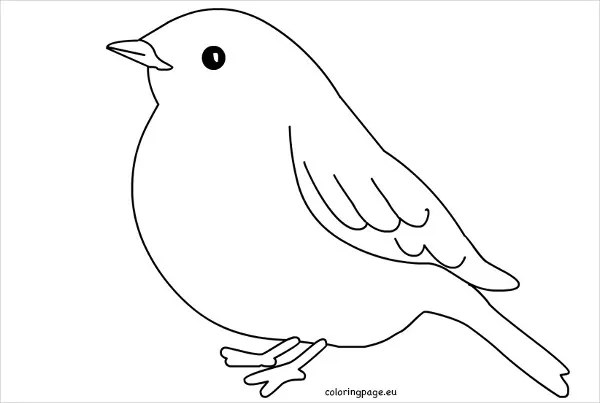 9 printable bird templates - free