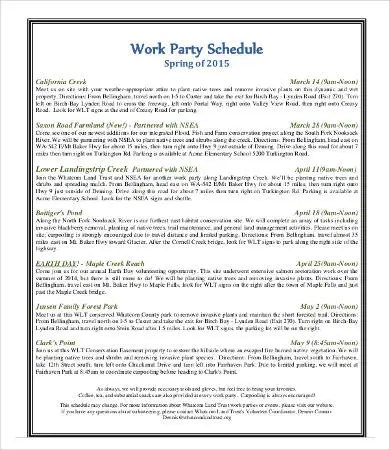 Party Schedule Template  12 Free Word PDF Documents Download  Free  Premium Templates