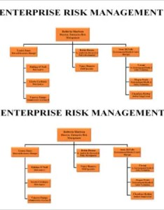 Enterprise risk management organizational chart template also free sample example format rh