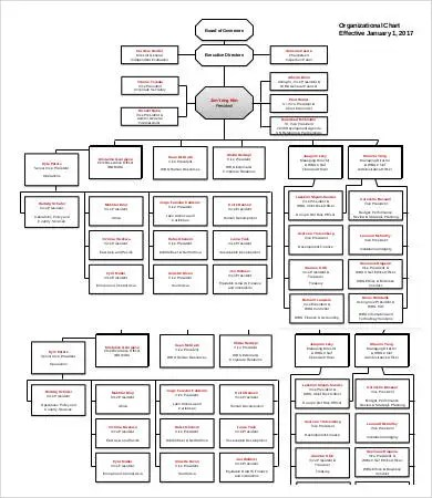 Large Organizational Chart Template Image collections