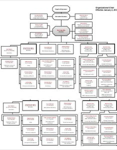 Large world bank org chart template also organizational free word pdf documents rh