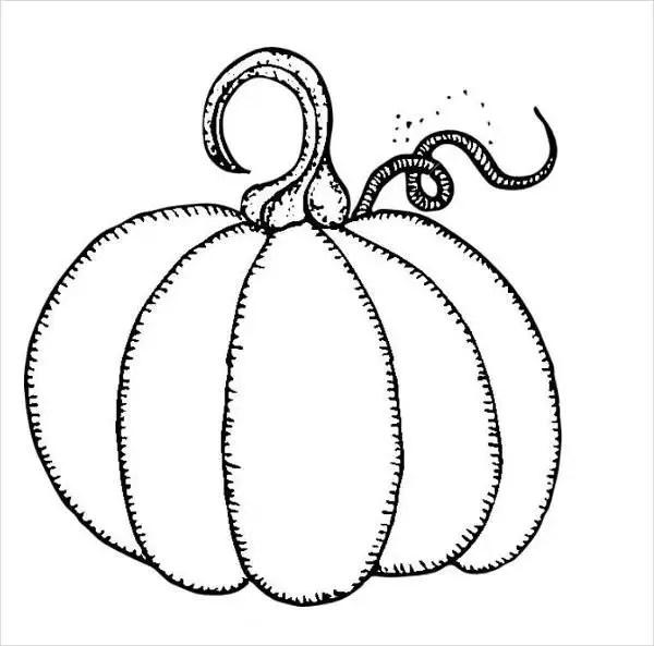 9 pumpkin coloring pages  jpg ai illustrator download