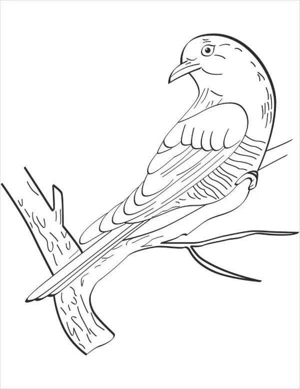 Angry Birds Flying Coloring Page