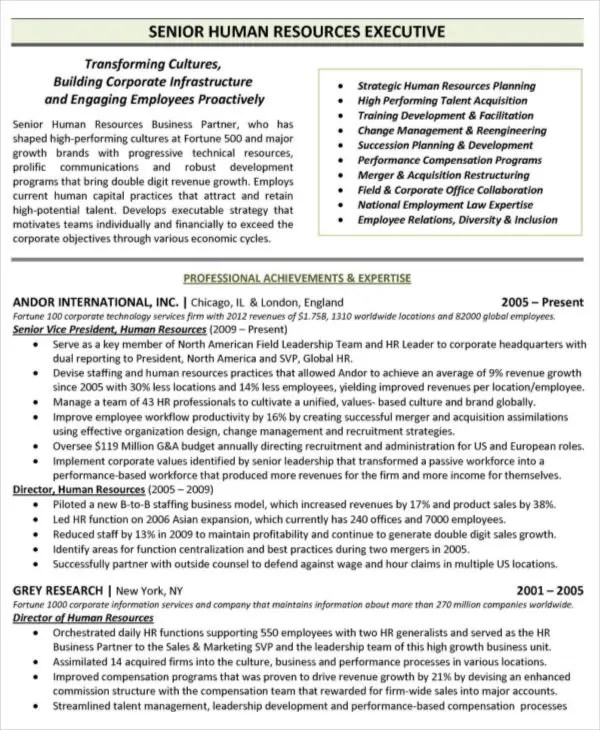 Executive Resume Template Free  Resume Sample