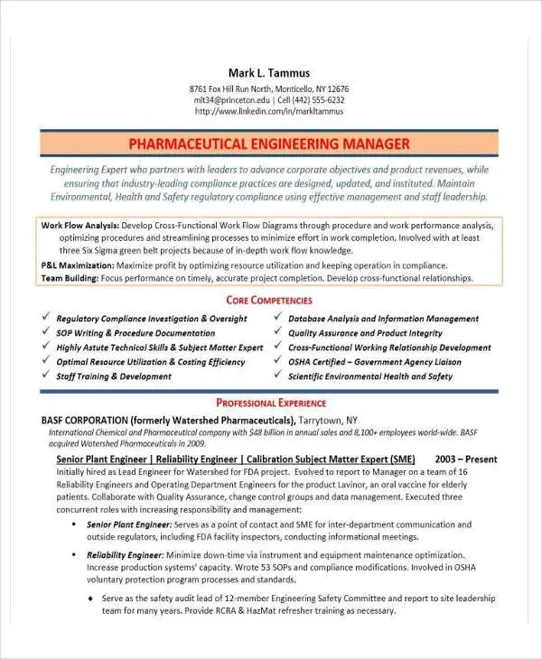 31 Professional Engineering Resume Templates PDF DOC