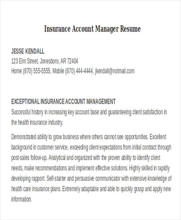 account director resume