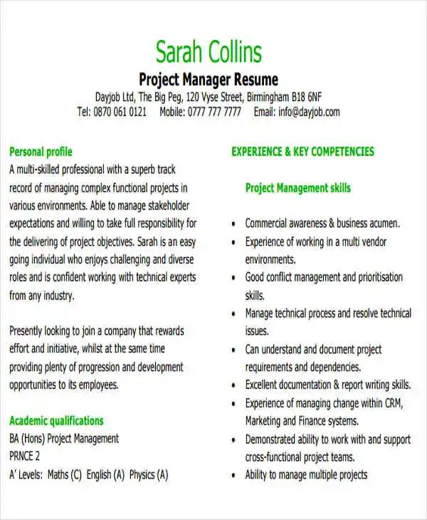 resume sample for technical manager