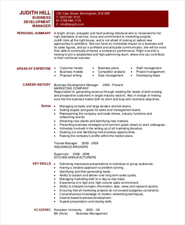 resume summary example for a business development