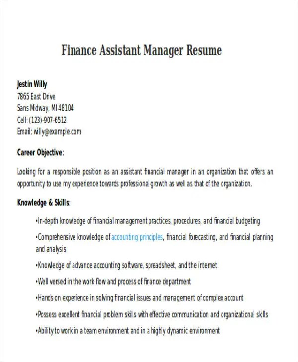 20 Professional Finance Resume Templates PDF DOC