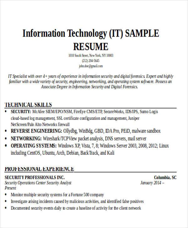 24 IT Resume Templates  PDF DOC  Free  Premium Templates