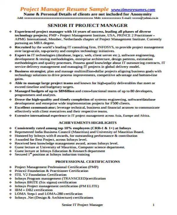 it program manager resumes