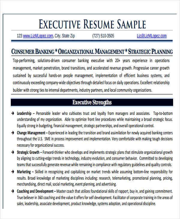 50 Business Resume Templates  PDF DOC  Free  Premium