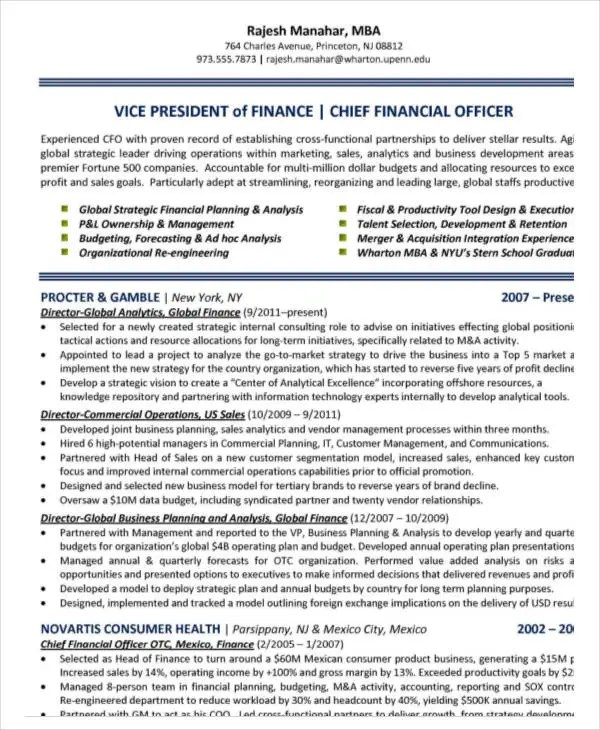 23 Finance Resume Templates PDF DOC Free & Premium