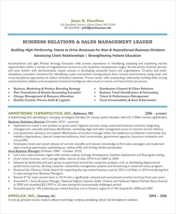 15 Best Sales Resume Templates  PDF DOC  Free