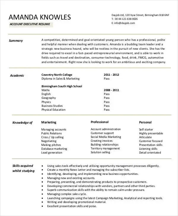 account executive resume format