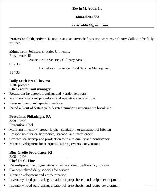 20 Executive Resume Templates  PDF DOC  Free  Premium Templates