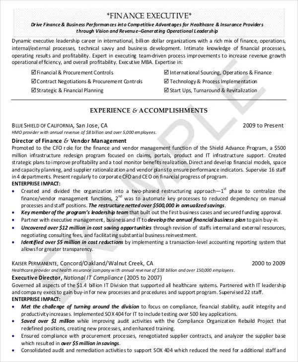 example of finance director resume