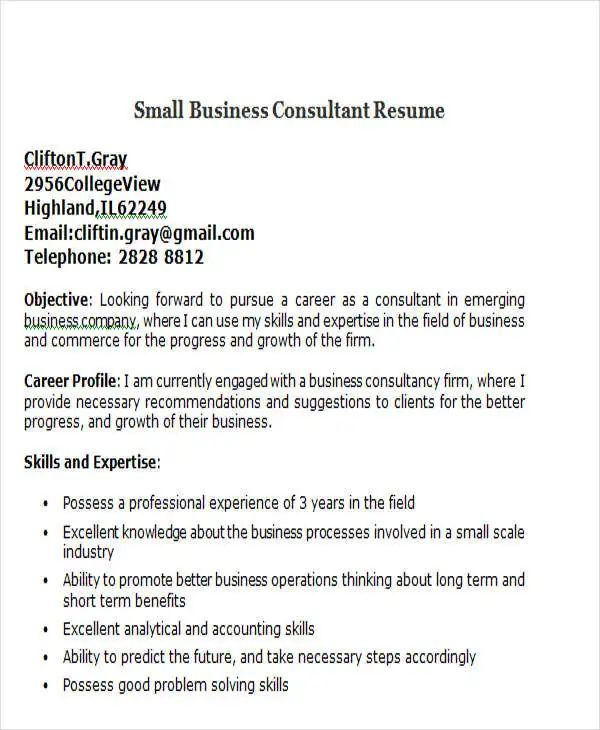 small business consultant resume