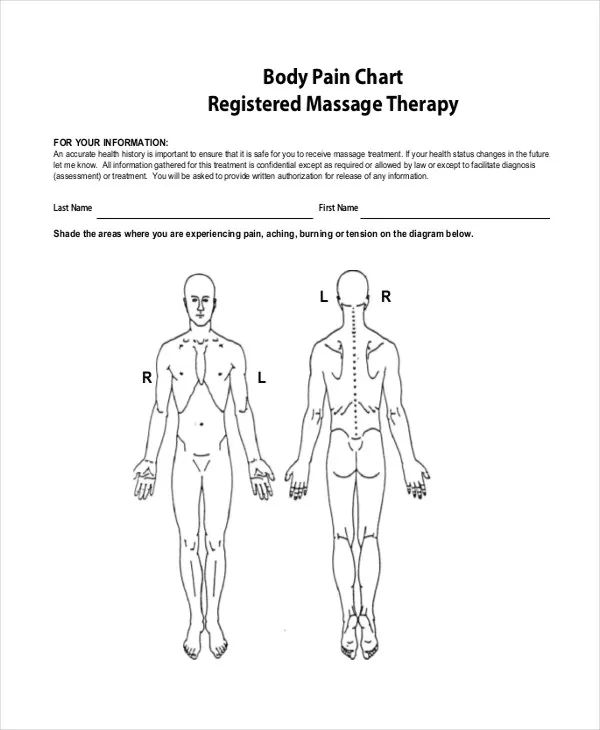 body measurement chart template download