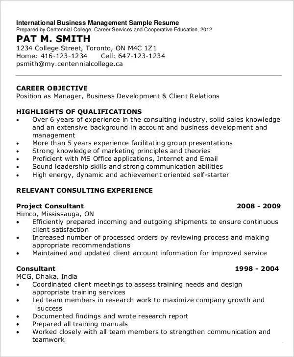 resume it consultant