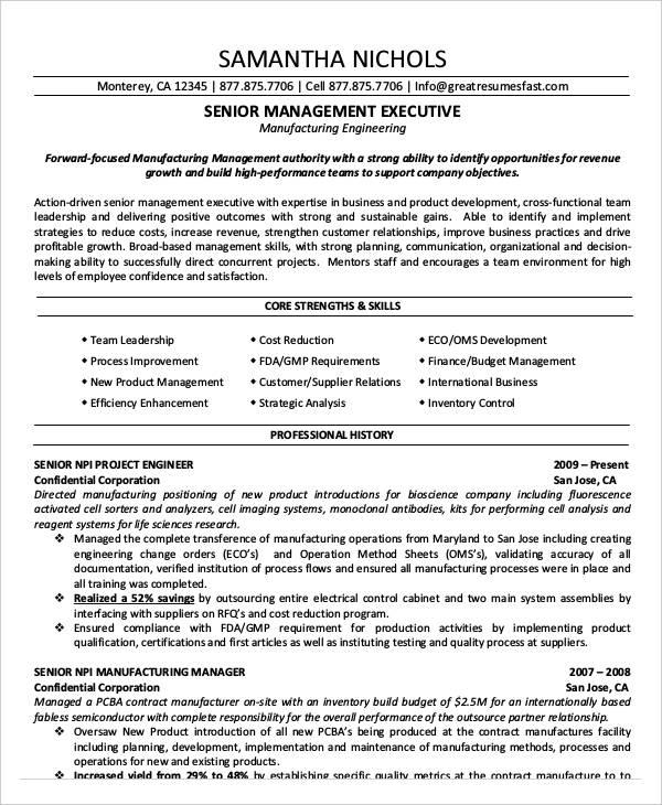 20 Best Executive Resume Templates PDF DOC Free