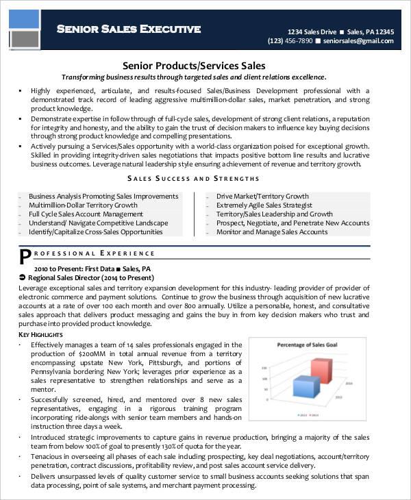sample senior executive resume