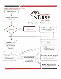 Company flowchart template sample injury reporting nurse flow chart also templates in pdf free  premium rh
