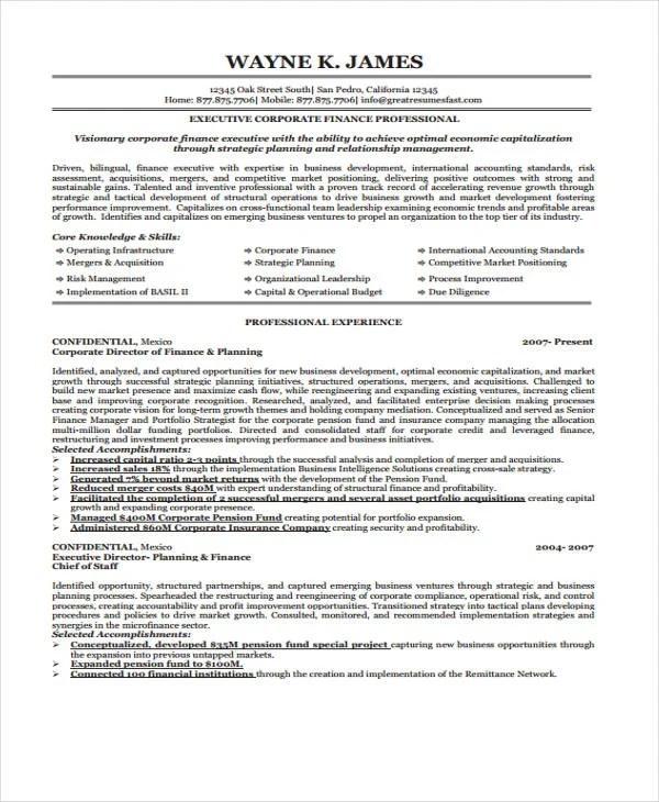 17 Finance Resume Templates PDF DOC Free & Premium