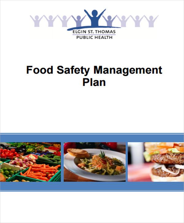 9 Quality Management Plan Templates Free PDF Word