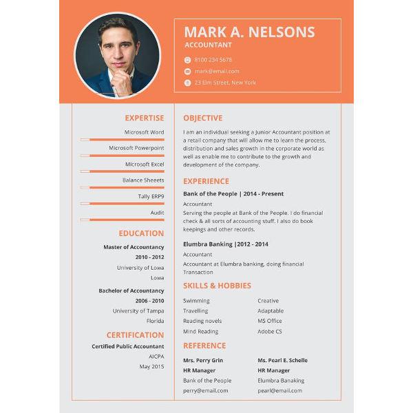 resume templates formats pdf