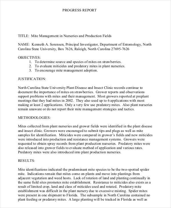 Progress Report Template 55 Free PDF MS Word Google
